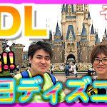 平日のディズニーランド攻略動画