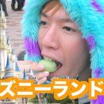 ディズニーランドで1万円使い切る企画動画